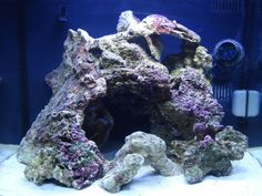 different types of live rock aquascape - Google Search