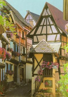 Eguisheim, hands down cutest village of France! <3