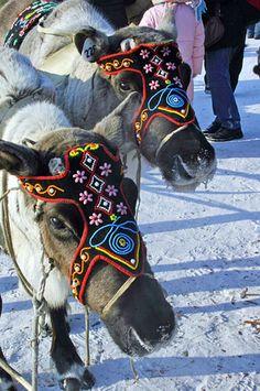 Sakha Republic (''Yakutia''), Northeast Siberia, Russia