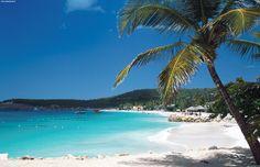 Antigua, mare cristallino e ricco di vita, spiagge di sabbia bianca e palme da cocco - Antigua & Barbuda - Caraibi | www.PressTours.it