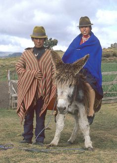 A married couple and their burro. High in the Andes of Cotopaxi Province, Ecuador Quito, Ecuador, South America, Leo, Places, Music, Nature, Musica, Musik
