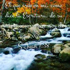 S.Juan 7:38