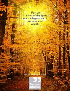 Peace is a fruit of the Spirit, not a byproduct of accumulated wealth. — Andy Stanley