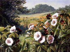 Imágenes Arte Pinturas: Vistas De Campos Naturales Con Flores, Paisajes de Mary Dipnall