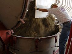 Essential Oil Distiller at Young Living Farms  Clary sage (Salvia sclarea) being placed into a distiller at Young Living farms Young Living Farms, Essential Oil Distiller, Clary Sage, Salvia, Goodies, Bath, Pure Products, Perfume Store, Sweet Like Candy