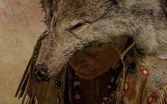 Museums, Goats, Horses, Animals, Animais, Animales, Animaux, Animal, Horse