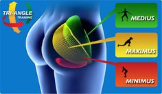 Great tips for how to target the 3 sections of your glutes! Exercises brokendown.