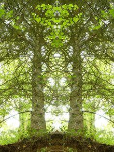 Regardez cette image que j'ai réalisée avec #PicsArt ! Créez le vôtre gratuitement  https://bnc.lt/f1Fc/27gbD8TVzt
