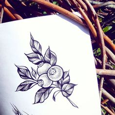 95 отметок «Нравится», 2 комментариев — Tattoo. Art. Mehndi. (@olga_kirikilica) в Instagram: «Кому ягодку? Свободный эскиз 2500р  #zакрас #тату #tattoo #татуэскиз #дотворк #dotwork #sketch…»