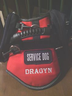 Getting A Ptsd Service Dog Badge