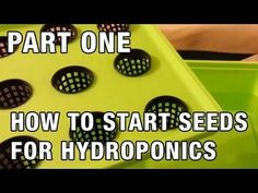 """Easy Seed Starting for Hydroponics"" by Epic Gardening - http://homeimprovementhelp.info/landscaping/easy-seed-starting-for-hydroponics-by-epic-gardening/"