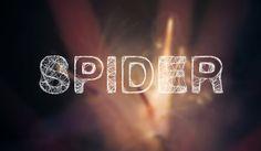 -Spider-