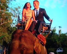 Bachelor Finale recap: All That Glitters. Sean, Catherine, and the elephant they rode off on.
