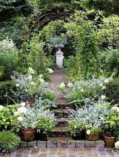 Moon garden...