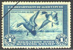 """1935 Federal Duck Stamp Mallards by Jay N. """"Ding"""" Darling. Brush and ink drawings of Mallards by Jay N. """"Ding"""" Darling, a famous cartoonist and noted conservationist. The artist was chief of the Biological Survey, a precursor of the U.S. Fish and Wildlife Service, from 1934 to 1936. """"Ding"""" conceived the idea of using duck stamps to raise money for the purchase of wetlands. (Deceased)"""