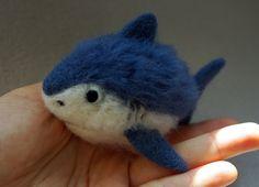 Aiguille de requin-A fourrure bleu feutré requin bleu !