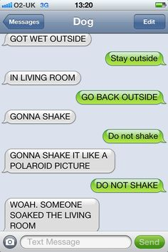 Txt from dog.
