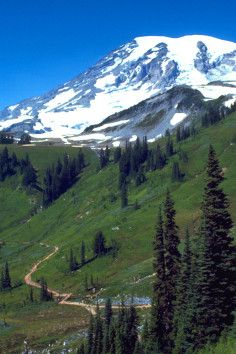 Mount Rainier National Park in Ashford stands as an icon on the Washington landscape.