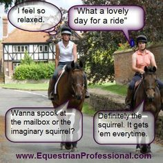 """I feel so relaxed""... ""What a lovely day for a ride.""  ... * ""Wanna spook at the mailbox or the imaginary squirrel?""  ""Definitely the squirrel. It get 'em every time."""