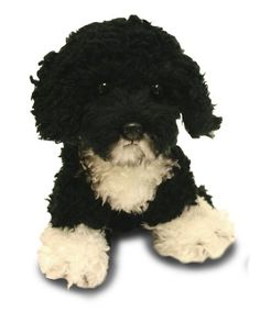 This is a toy. Even better :-) Yomiko Yomiko Portuguese Water Dog 10 by Russ -- Check this awesome product by going to the link at the image. Portuguese Water Dog, White Puppies, Dog Art, Yorkie, Dog Breeds, Cute Pictures, Cute Animals, Pets, Amazon
