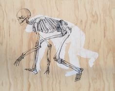 """, ink and acrylic on plywood, Joe McMenamin Nz Art, Moose Art, Ink, Plywood, Skeleton, Paintings, Animals, Artists, Illustrations"