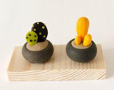 Dos plantas en miniatura sobre base de madera dorada crasas suculentas azul…