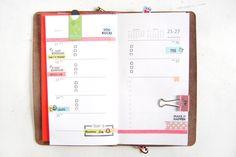 End of Year Planning in Foxydori