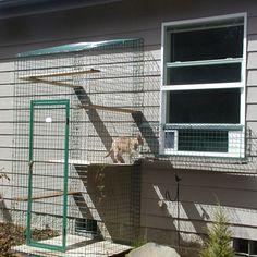 Safe, Friendly Cat and Dog Enclosures » Home of Habitat Haven