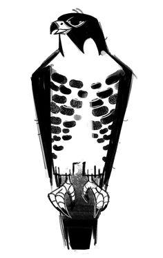 Peregrine Falcon (Bird Week, day bit behind, two more birds to go! Always loved Peregrine Falcons :D Bird Of Prey Tattoo, Falcon Tattoo, Hawk Tattoo, Illustration Cartoon, Cartoon Drawings, Gig Poster, Animal Sketches, Animal Drawings, Eagle Cartoon