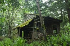 Cabin in which Phil Elverum of Microphones and Mt. Eerie lived in for a year--Anacortes, Washington.