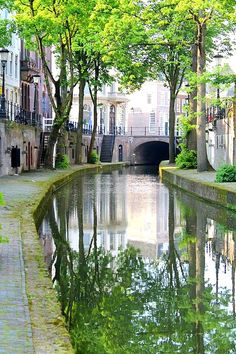 "Search Results for ""netherlands"" – Travel Europe – The Home of Culture Utrecht, Rotterdam, Beautiful World, Beautiful Places, Amsterdam Things To Do In, Voyage Europe, Cool Places To Visit, Netherlands, Pictures"