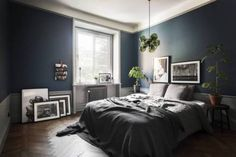 Bedroom with dark blue wall, grey bed and plants