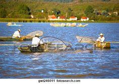 pescadores, pesca, en, un, lago, lago, patzcuaro, patzcuaro, estado de michoacan, méxico Ver Imagen agrandada