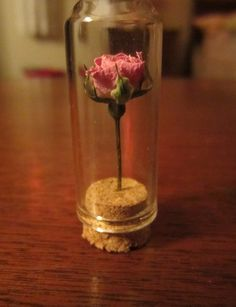 (12) dried flowers | Tumblr