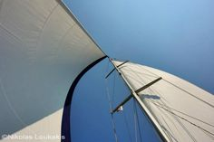Sails in the wind...