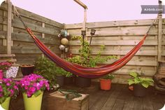 cosy apartment with roof terrace!! in Amsterdam