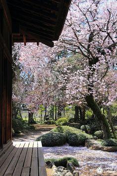 Naka-in, temple aux à ! Miyazaki Film, Yuki Onna, Tokyo, Temple Gardens, Japanese Temple, Takayama, Pokemon Fan Art, Abstract Wall Art, How To Draw Hands