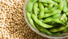 Soy Slims a Fatty Liver : Focus28 Diet Weight loss