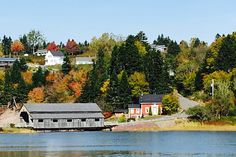 Treasures On The Bay Of Fundy