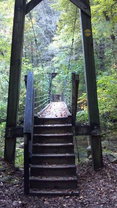 Bridge crossing the Toxaway River. Gorges State Park, Lake Jocassee SC NC line.