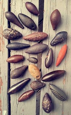 Ancient Native American ardstone plummets, mostly hematite and banded slate. Native American Tools, Native American Images, Native American Artifacts, American Indian Art, Native American History, Native American Indians, Stone Carving Tools, Stone Age Tools, Indian Artifacts