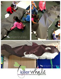 I want to see this life size whale Mrs. M Dragonflies in First: Killer Whales and Oceans of Fun Ocean Projects, Ocean Activities, Vocabulary Activities, Classroom Themes, Ocean Themed Classroom, Classroom Displays, Science Classroom, Science Education, Future Classroom