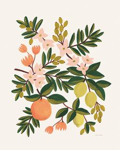 citrus floral print #illustration