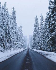 Road in the snowy forest (Oregon) Long overdue by Elliot Hawkey (@elliothawkey)❄️cr.