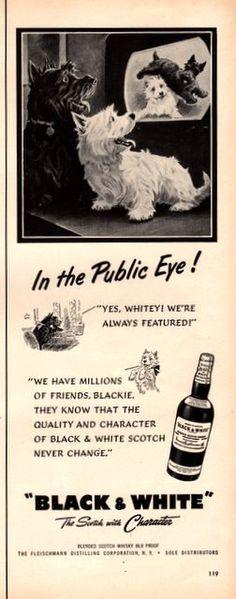 1951 Black and White Scotch Whisky vintage print ad by Vividiom, $9.00