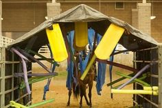 10 Trail Obstacles On Every Horseman's Wishlist « HORSE NATION