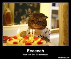 sretan rođendan smiješno 22 best Sretan rođendan ↕ images on Pinterest | Birthday  sretan rođendan smiješno