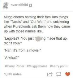 Harry Potter Puns, Images Harry Potter, Harry Potter Universal, Harry Potter World, It's My Life, Hogwarts, No Muggles, Yer A Wizard Harry, Books