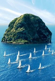 Sail past Diamond Rock. This basalt island is part of Martinique and glimmers like a jewel in the sunlight.