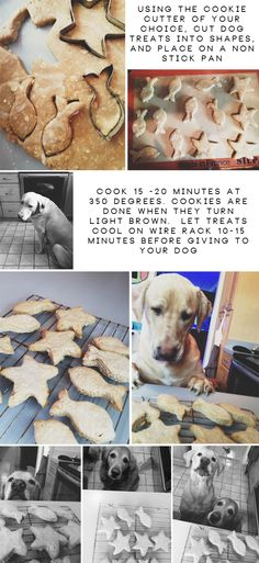 DIY : Homemade Peanut Butter Dog Treats » Glitter & Lace